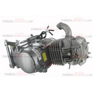 http://www.pitbikearena.com/presta/img/p/87-186-thickbox.jpg